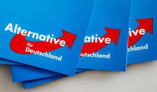 Die Alternative für Deutschland plant eine Plakat-Kampagne gegen Angela Merkel. (Foto)