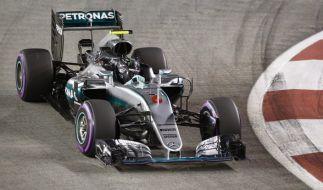 Nico Rosberg auf Siegeskurs. (Foto)