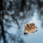 Kalendarischer Herbstbeginn - So wird das Herbst-Wetter in Deutschland (Foto)