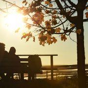 So sonnig wird das Herbstwetter am Wochenende (Foto)