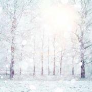 Aktuelle Wetter-Prognose: Haben wir 2016 wieder weiße Weihnachten? (Foto)
