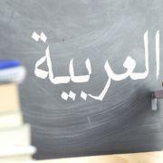 Deutsche sollen Fremdsprache der Zuwanderer lernen (Foto)