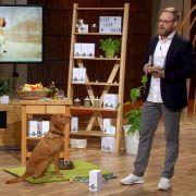 Das taugt das DHDL-Hundefutter wirklich! (Foto)