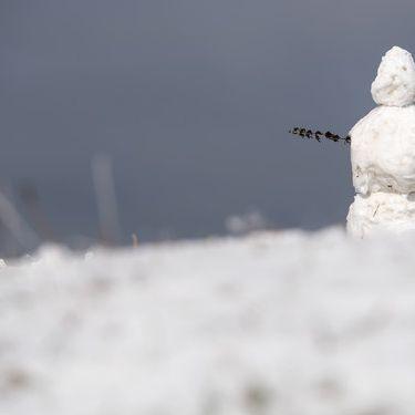Der erste Schnee fällt schon! Hier sorgt Tief Danielle für weiße Pracht (Foto)