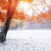 Temperatursturz! Kommt aktuell der erste Schnee? (Foto)
