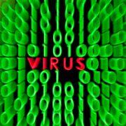 So schützen Sie sich vor Abzocke im Internet (Foto)