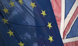 Das Britische Parlament muss in die Verhandlungen über einen möglichen EU-Austritt mit einbezogen werden. (Foto)