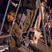 So viel kostet ein Flüchtling pro Jahr wirklich (Foto)