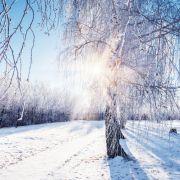 So wird das Winterwetter im Dezember und zu Weihnachten (Foto)