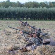 Jäger bei Treibjagd tot aufgefunden (Foto)