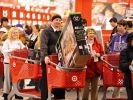 Zum Black Friday und Cyber Monday winken in den USA traditionell satte Rabatte und Schnäppchen. (Foto)