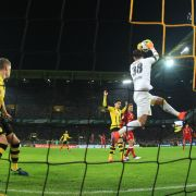 Tor-Festival in der Champions League - BVB feiert Reus (Foto)