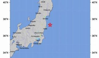 Das Beben der Stärke 7,3 ereignete sich vor der Küste Fukushimas. (Foto)