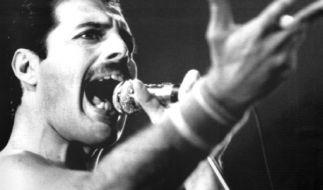 Freddie Mercury, der charismatische Frontmann der Band Queen, starb 1991 an einer Lungenentzündung. 2016 jährt sich sein Todestag zum 25. Mal. (Foto)