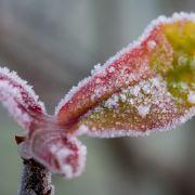 Winterfest! Das sollten sie unbedingt in diesem Monat erledigen (Foto)
