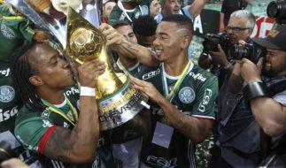 Der Erstligist Chapecoense hat am 27. November 2016 den brasilianischen Championschip in Sao Paolo gewonnen. (Foto)