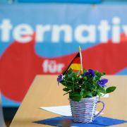 DARUM verliert die AfD deutlich an Wählerstimmen (Foto)