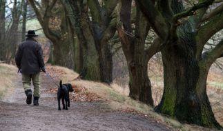 Ausgedehnte Spaziergänge sind am Wochenende zumindest von den Temperaturen her, kein Problem. (Foto)