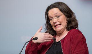 Bundesarbeitsministerin Andrea Nahles (SPD) hatte angekündigt, erstmals den Einfluss von Eliten und Vermögenden auf politische Entscheidungen untersuchen zu lassen. (Foto)