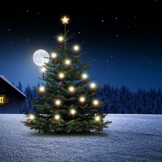 So sehr beeinflusst der Mond das Weihnachtsfest (Foto)