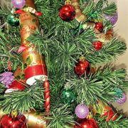 Australierin entdeckt Giftschlange im Weihnachtsbaum (Foto)