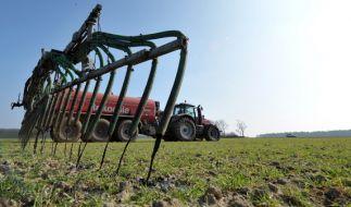 Die Ursache für die hohe Nitratbelastung soll in der Landwirtschaft liegen. (Foto)