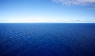 Ein Angler musste fünf Stunden in den Gewässern vor Australien ausharren, bis er gerettet wurde. Ein Speerfisch hatte ihn ins Meer gezogen. (Symbolbild) (Foto)