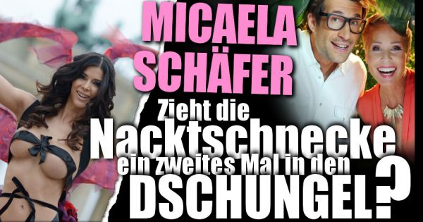 Dschungelcamp 2017: Zieht sich Micaela Schäfer nochmal aus ...
