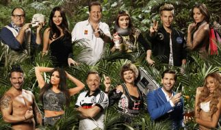 Diese zwölf Kandidaten ziehen ins Dschungelcamp 2017! (Foto)
