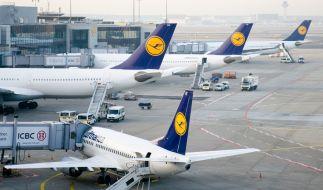 Lufthansa-Passagiere sind bei einem Unfall auf dem Vorfeld des Flughafens verletzt worden. (Symbolbild) (Foto)