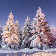 Deutschland wird zum Eisblock - Neue Kälte-Rekorde (Foto)