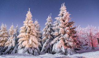Schneebedeckte Nadel- und Laubbäume stehen bei Temperaturen weit unter null Grad am 06.01.2017 auf dem Fichtelberg bei Oberwiesenthal (Sachsen). (Foto)