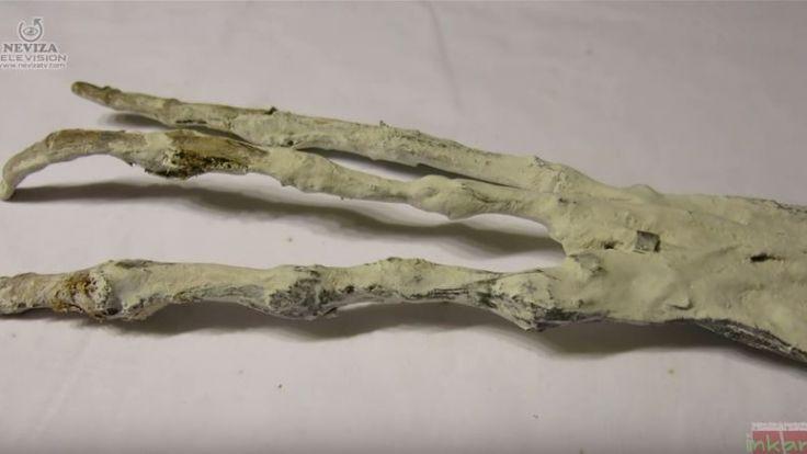 Mysteriöser Knochenfund in Peru (Foto)