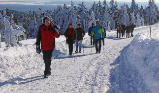 Top-Wintersportbedingungen haben Skiläufer und Spaziergänger in Scharen in die deutschen Mittelgebirge gelockt. (Foto)