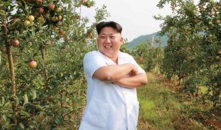 Sind die Tage von Kim Jong Un als Diktator Nordkoreas bald vorbei? (Foto)