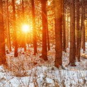 Eiskalt und regnerisch? Das sagt der 100-jährige Kalender (Foto)