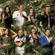 Was jetzt? So hoch sind die Karriere-Chancen der Dschungelstars (Foto)
