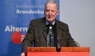 Gauland gibt AfD-Spitzenposten in Brandenburg für Bundestagswahl auf (Foto)