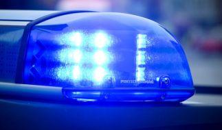 Eine wilder Verfolgungsjagd mit der Polizei endete auf einem Acker. (Foto)