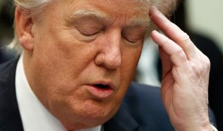 Donald Trump wird keine lange Amtszeit als Präsident der USA haben - jedenfalls wenn es nach Expertenmeinungen geht. (Foto)