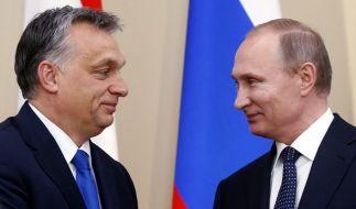 Russlands Präsident Putin (r) und der ungarische Ministerpräsident Orban bei einer gemeinsamen Pressekonferenz in Moskau am 17. Februar 2016. (Foto)