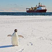 Türkei beansprucht Teile der Antarktis für sich (Foto)