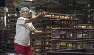 Antje Dreißig alias Barbara Steinmann lernt den harten Alltag in ihrer Bäckerei kennen. (Foto)