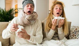 Husten, Fieber und Heiserkeit: Die Grippe ist wieder auf dem Vormarsch. (Foto)
