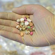 Harter Schlag! Polizei findet Milliarden Ecstasy-Pillen (Foto)
