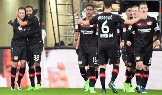 Bayer Leverkusen trifft beim CL-Wiedersehen auf Atlético Madrid. (Foto)