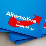 AfD-Anfrage sorgt für Spott - Urin mit Migrationshintergrund? (Foto)