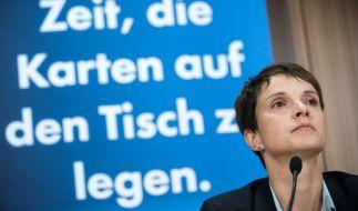 Ein neues Buch beleuchtet die Hintergründe der Alternative für Deutschland. (Foto)
