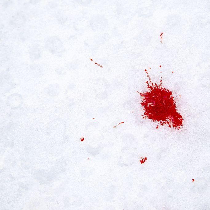 Blutschnee im Anmarsch! Hier können Sie das Natur-Phänomen erleben (Foto)