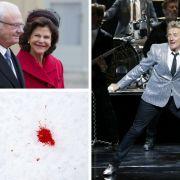 Mysteriöser Todesfall bei den Schweden-Royals (Foto)